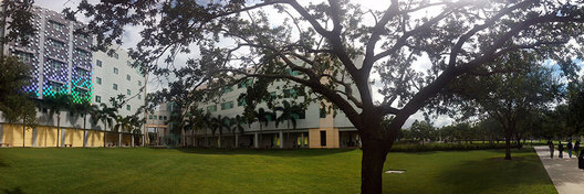 This is the campus of Florida International University. There are beautiful lawns as well as an abundance of palm trees that cover the whole campus.