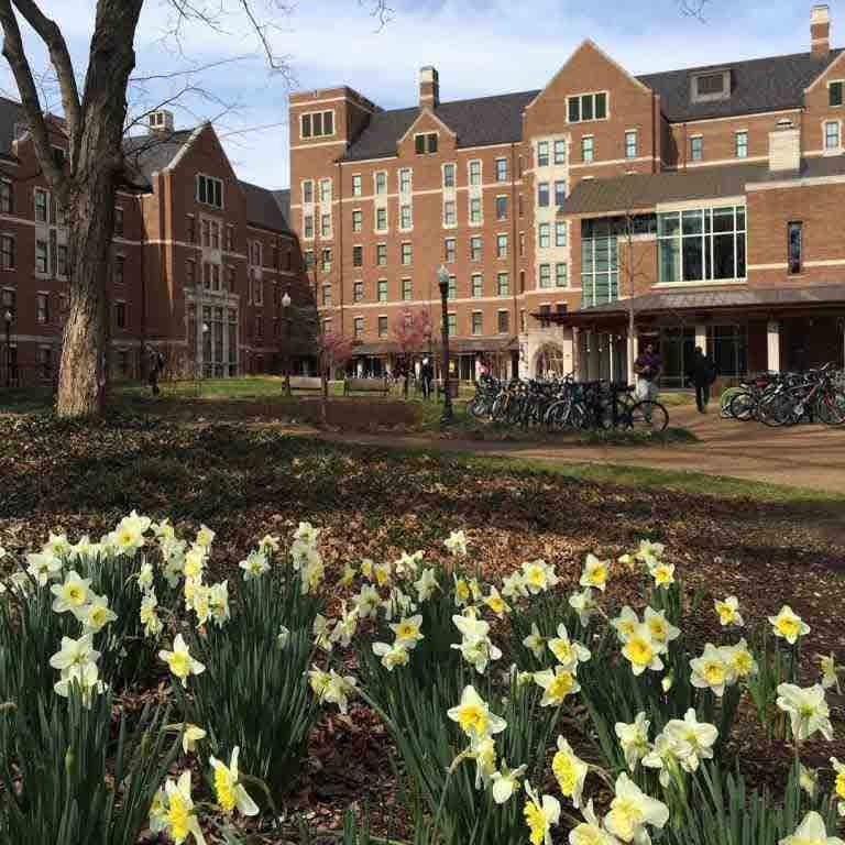Vanderbilt University - OneClass